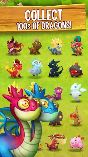 Play Dragon City on PC 3