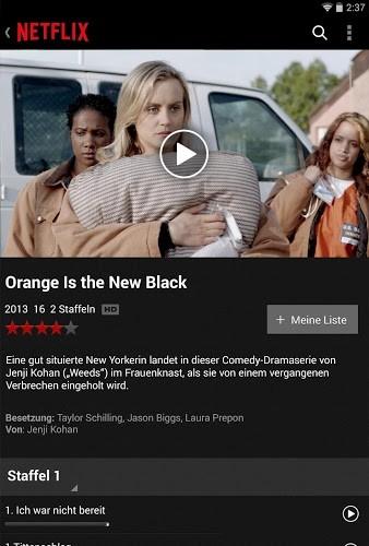 Spielen Netflix on PC 13