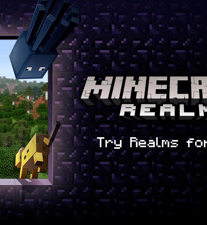 Jogue Minecraft para PC 9