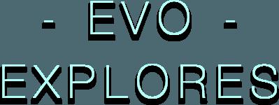 Play Evo Explores on PC