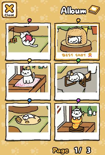 Play Neko Atsume: Kitty Collector on pc 15