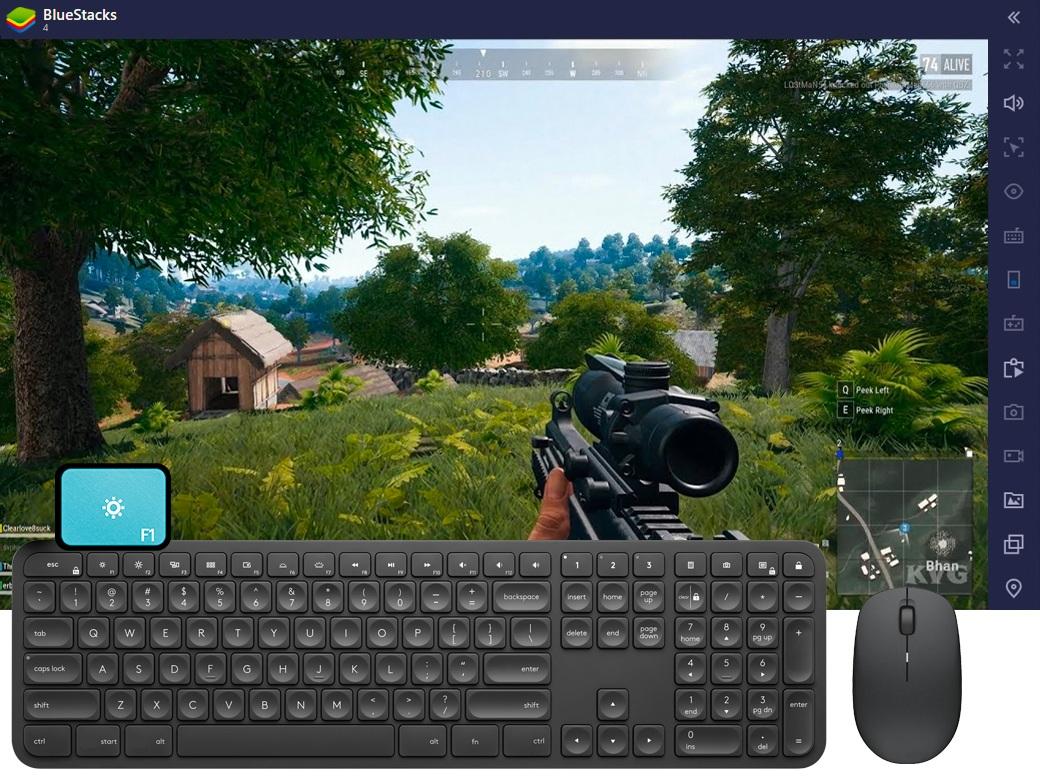 BlueStacks 5 screenshot