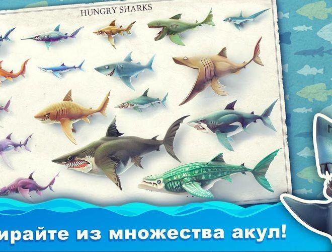 Играй Hungry Shark World На ПК 7