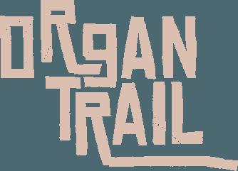 Play Organ Trail: Director's Cut on PC