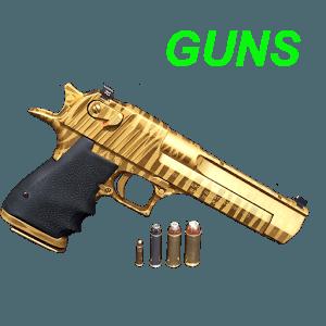 Play Guns on PC 1