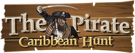 Играй The Pirate: Caribbean Hunt На ПК
