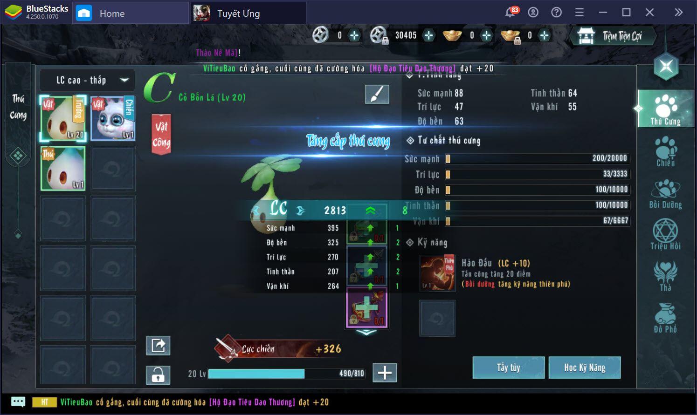Tuyết Ưng VNG: Những mẹo hay giúp chơi hiệu quả hơn