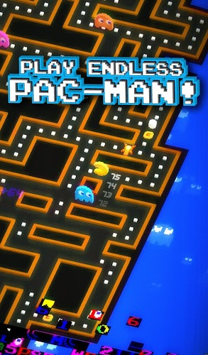 Speel Pac-Man 256 on pc 3