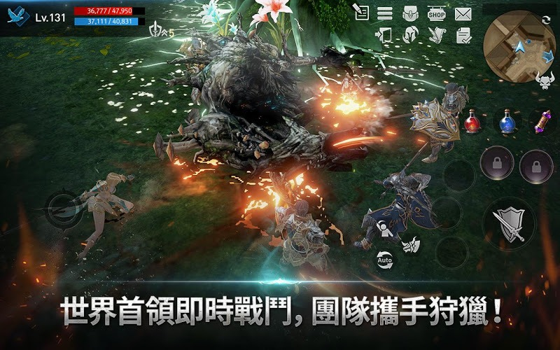 暢玩 天堂2:革命 PC版 11
